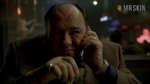 Sopranosthe s06e11 walker hd 01 large 3